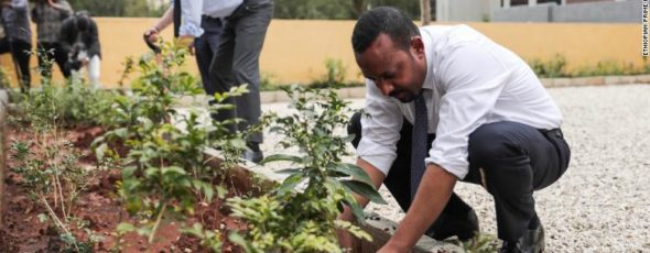 Ethiopia tree plating CNN World | James Alexander Michie