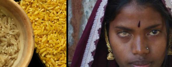 Golden Rice Leapsmag | James Alexander Michie
