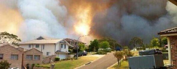 A bushfire burns in Springwood, NSW. (AAP) SBS News | James Alexander Michie